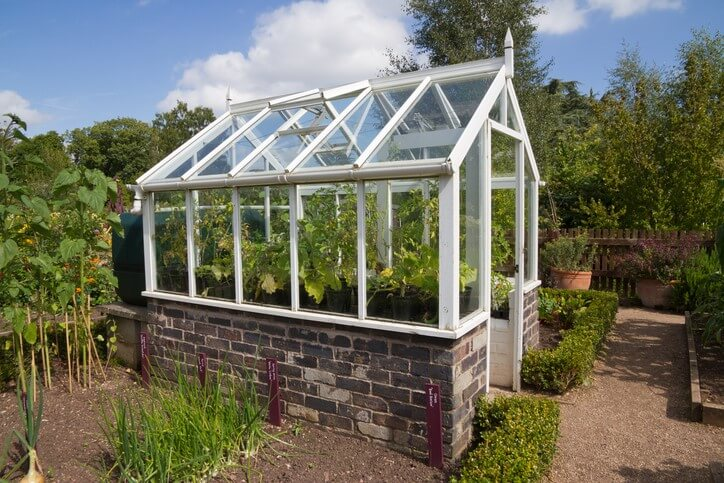 Greenhouse with polycarbonate windows