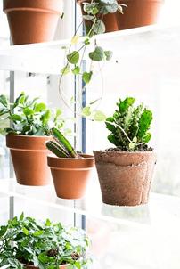 acrylic-shelves